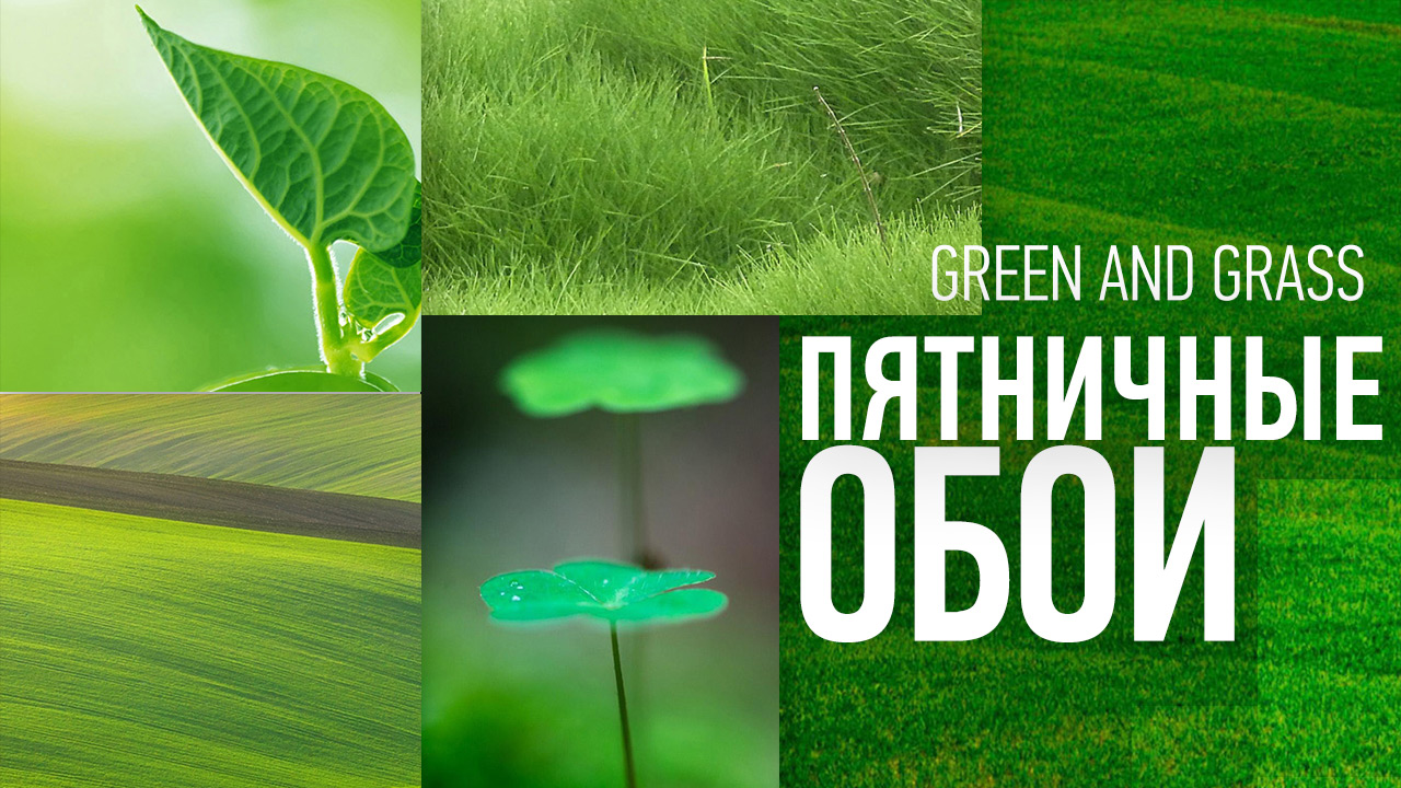 Green and Grass